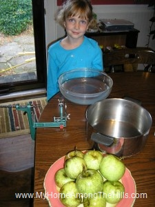 Ready to peel apples for apple jelly