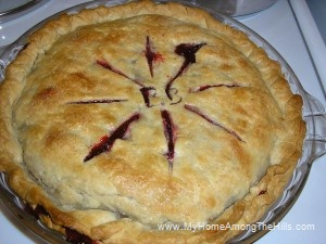 Blackberry pie!