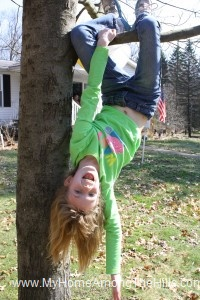 Upside down in a tree