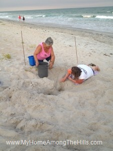 Getting ready to move loggerhead turtle eggs