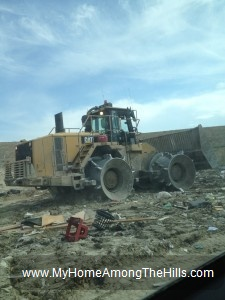 At the landfill