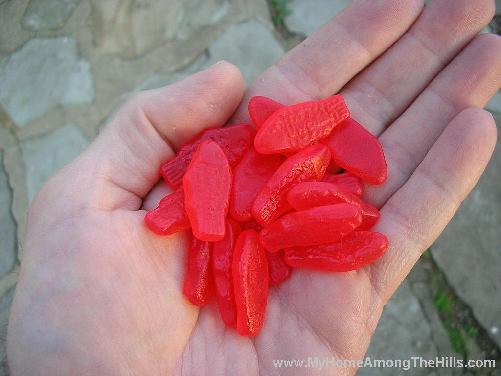 Swedish fish bag Grape swedish fish