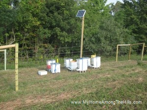 Solar Powered Electric Fence My Home Among The Hills